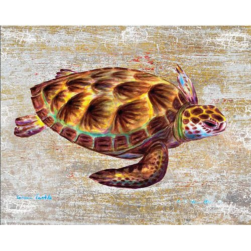 Betsy Drake Green Sea Turtle 16 X 20 Inch Wooden Wall Hanging price