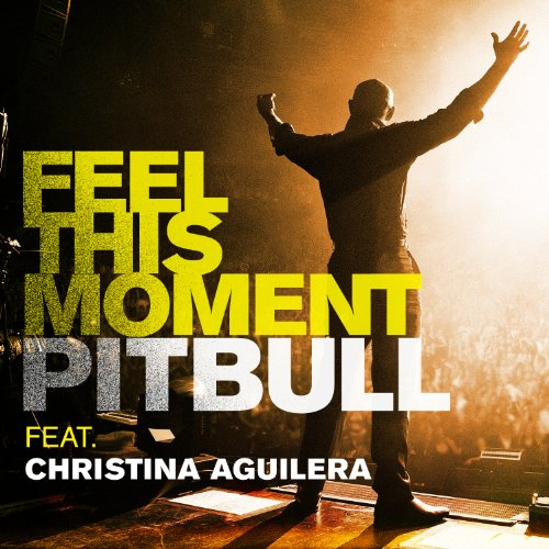 Feel This Moment by Imports