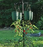 Bottoms Up Self-Watering Hanging Vegetable Planter in Green