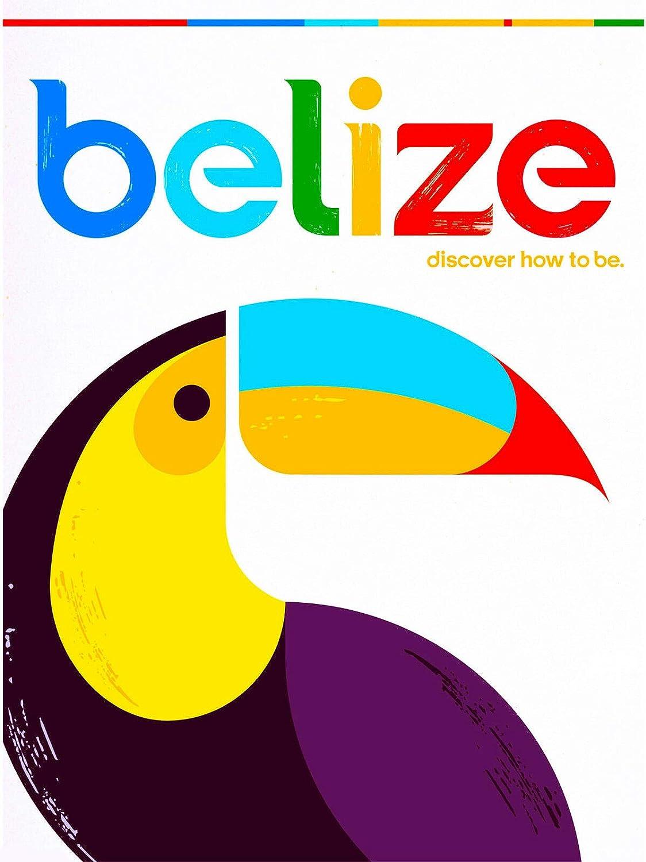 Tin Sign Bird Toucan
