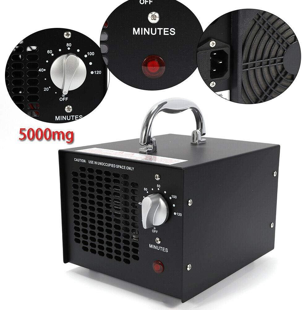 Generador de ozono (5000 mg/h, 220 V)