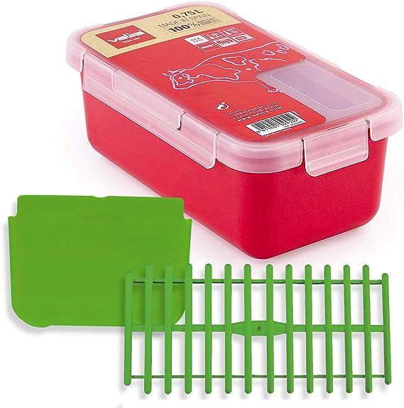 Set Tupper plastico Valira 0,75 L Frambuesa + Separador + Rejilla: Amazon.es: Hogar