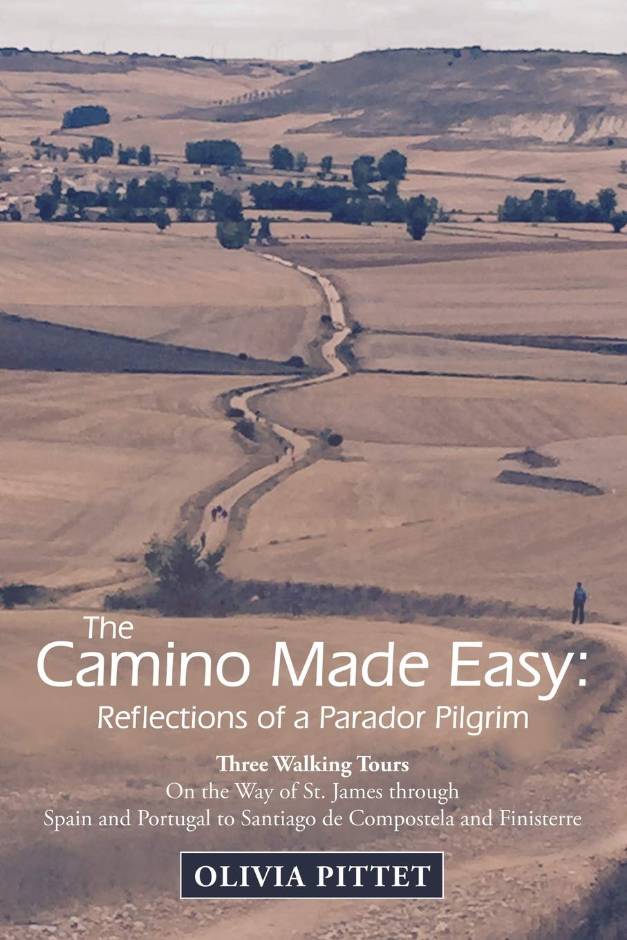 The Camino Made Easy: Reflections of a Parador Pilgrim ...