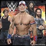 2018 WWE