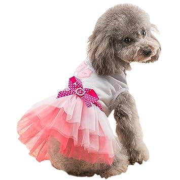 Amazon.com: Vestido de encaje para mascotas con lazo y lazo ...