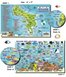 Franko Laminated Maps - Fish ID and Maps - Bonaire Scuba Dive Diving Diver Snorkel Snorkeling Map Guide Traveling Travel