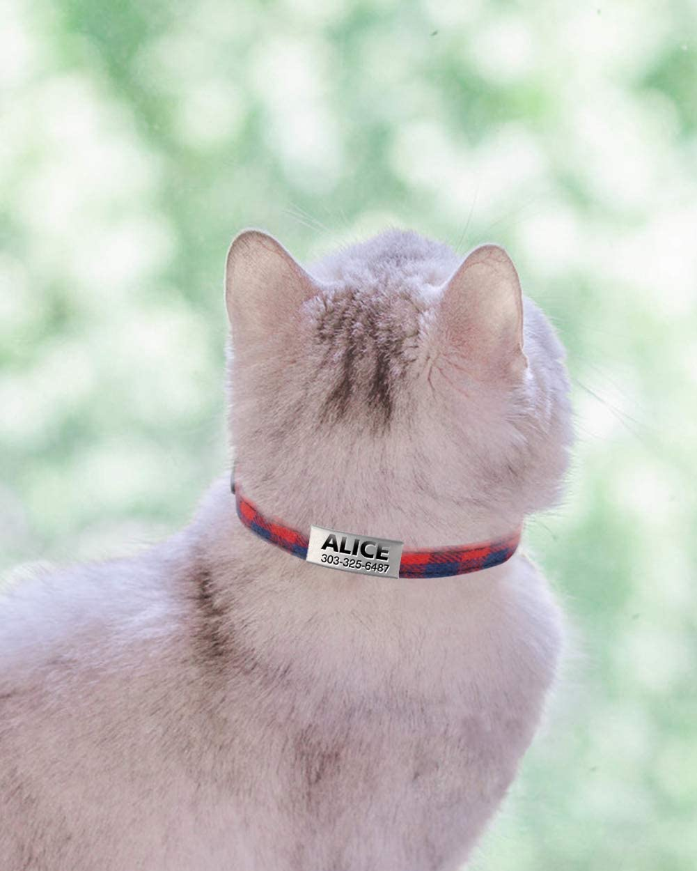 Cut Bowtie and Safety Release Breakaway ID Cat Collar with Name Tag Engraved,18-25cm Red Taglory Personalised Cat Collars with Bell