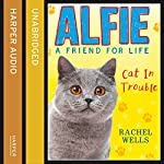 Alfie Cat in Trouble | Rachel Wells