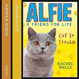 Alfie Cat in Trouble Audiobook