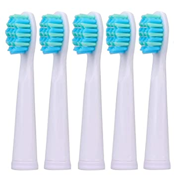 Amazon.com: New Sonic Electric Toothbrush USB Charge Rechargeable Tooth Brushes Value,5pc brush head-White: Beauty