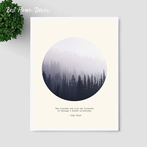 Forest Quotes Cool Amazon Forest Quotes Wall Hanging Art Gift Pictures The