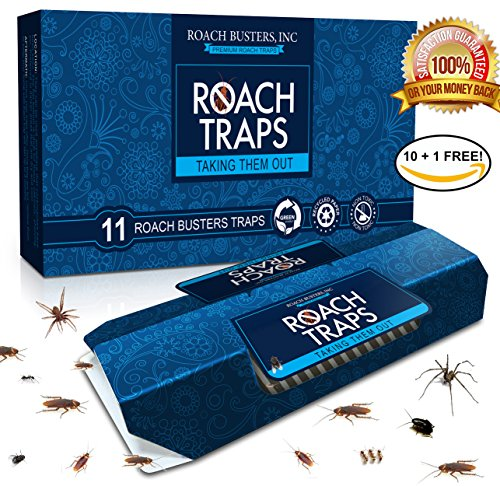 11-pack-cockroach-traps-premium-non-toxic-eco-friendly-spiders-ants-roach-busters-10-traps-1-free-ba