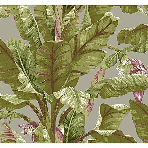 York Wallcoverings AT7069 Tropics Banana Leaf Wallpaper, Grey, Light Yellow/Green, Dark Brown, (Dark Purple Wallpaper)