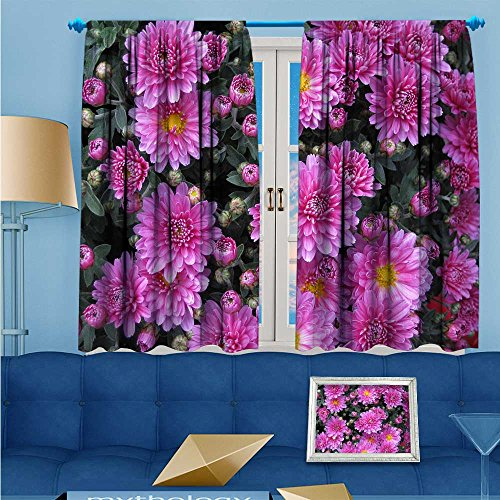 - L-QNHOME Thermal Insulated Grommet Unlined Window Curtains The blooming Astor Chrysanthemum Set of Two Panels 72