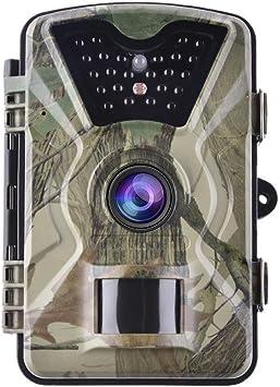 Fancylande Cámara de Caza 12 MP 1080P con 24 sensores Infrarrojos ...