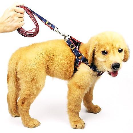 Arnés ajustable para perro vaquero resistente para mascotas con ...