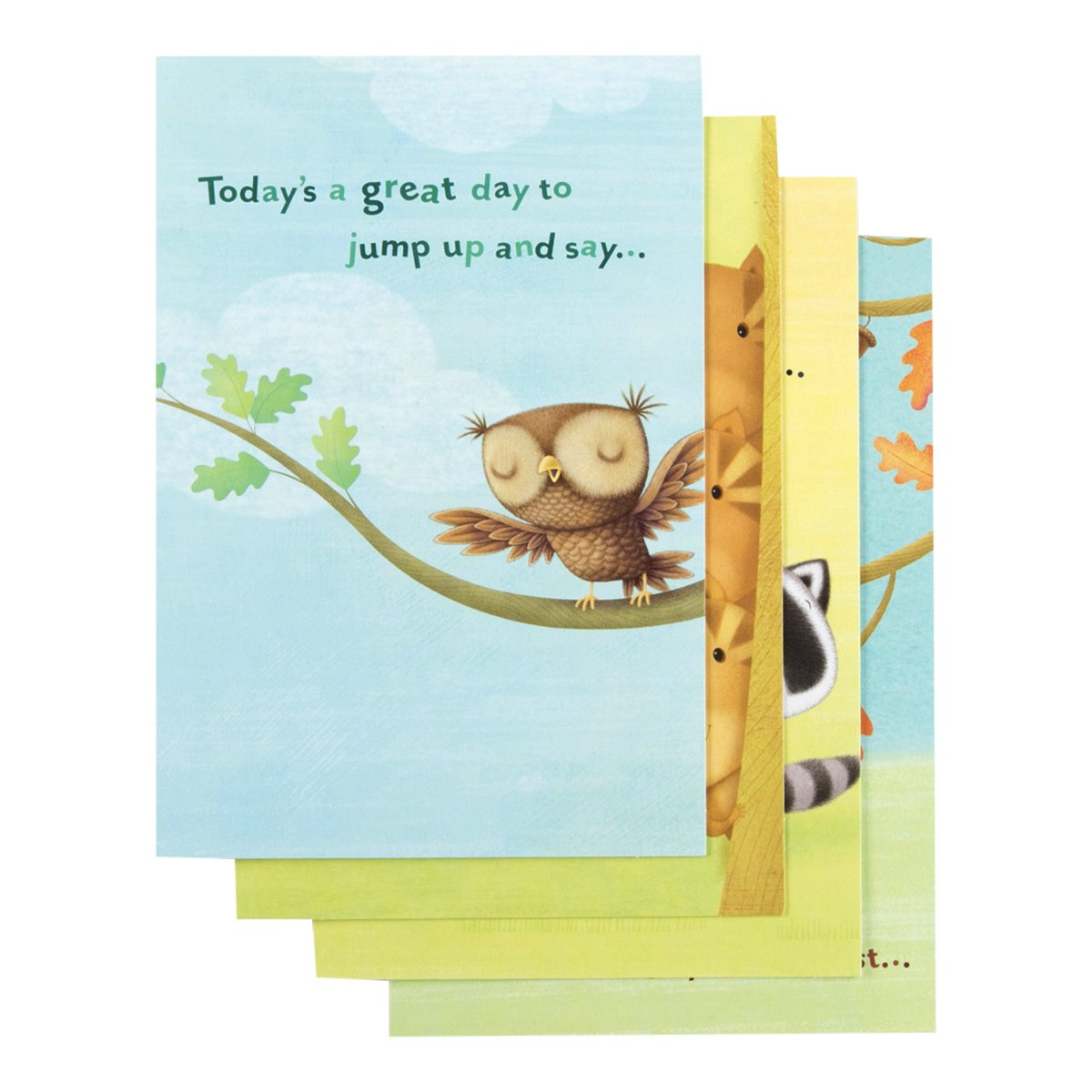 Birthday - Inspirational Boxed Cards - Happy Critters DaySpring Company 36622