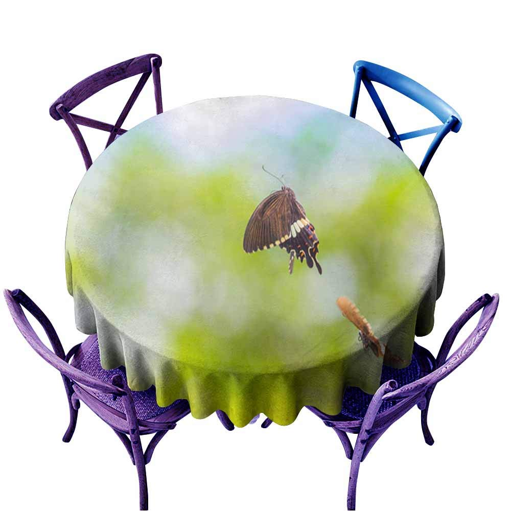 color10 67  Round(170CM) AndyTours Fashions Table Cloth,Beautiful Butterfly with Natural Background,High-end Durable Creative Home,70 INCH