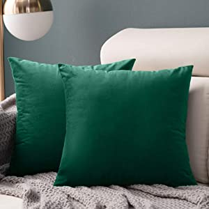 Horeal Pack of 2 Velvet Pillow Covers Soft Solid Square Decorative Cushion Cases Set with Hidden Zipper for Sofa Bedroom Car Living Room Home Decor 18x18 Inch 45x45 cm Green