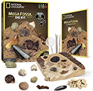 NATIONAL GEOGRAPHIC Mega Fossil Dig Kit – Excavate 15 Real Fossils Including Dinosaur Bones & Shark Teeth,