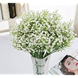 HILINGO Artificial Baby Breath/gypsophila Wedding Decoration Flower White Colour Flowers Real Touch Flowers Pu Flower Set of 30 (With Gift)