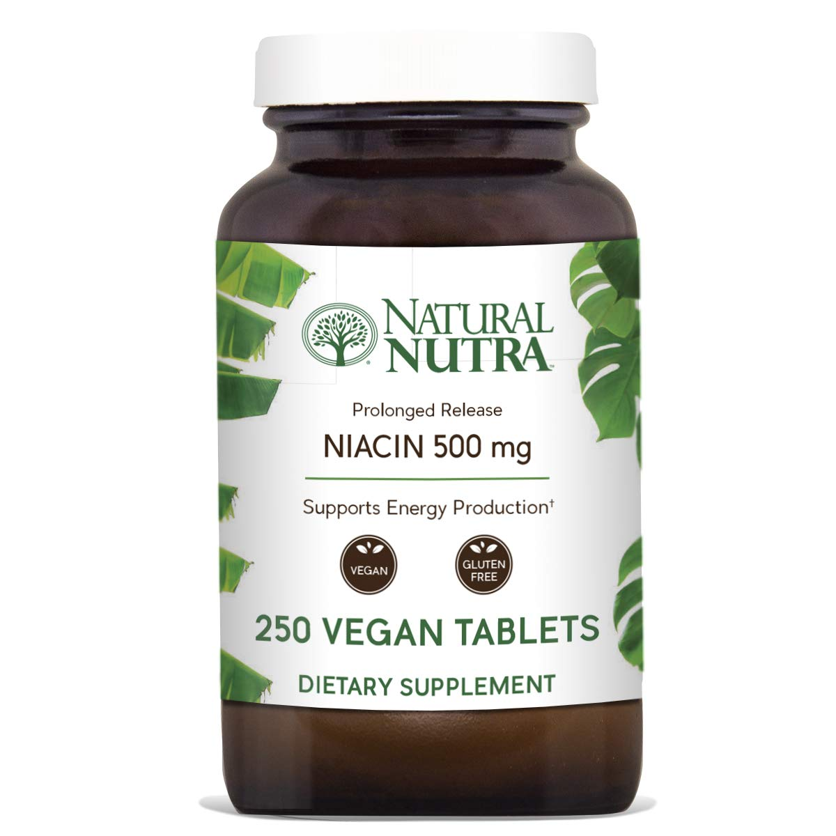 Natural Nutra Time-Release Niacin 500mg (Vitamin B3) with Nicotinic Acid, Cholesterol Supplement, 250 Vegan and Vegetarian Tablets