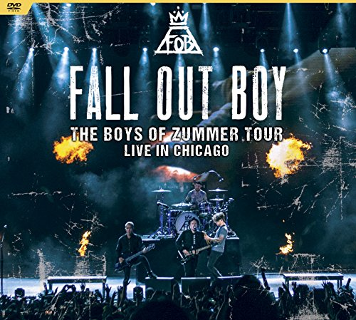 the-boys-of-zummer-tour-live-in-chicago