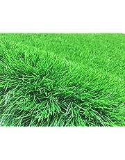 Artificial Grass 40 mm (size : 4 x 1 M) ONLY 1 L M - 4 SM2