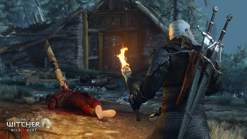 The witcher online