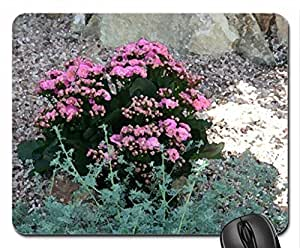 A shiny day at Edmonton garden 09 Mouse Pad, Mousepad (Flowers Mouse Pad, Watercolor style) by icecream design