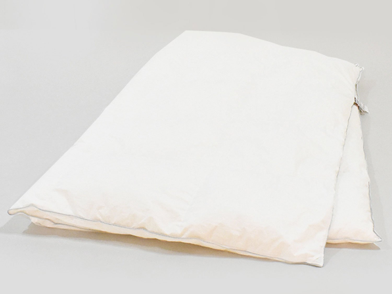 IDC OTSUKA(大塚家具) 掛けふとん 羽毛布団 ダウナ レギュラー クリーム シングル B07CM1469Q シングル|レギュラー シングル
