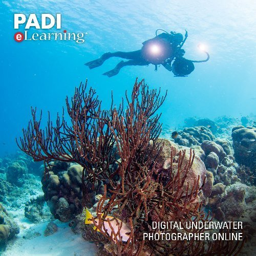 (PADI Online Rescue Diver Course Scuba Diving eLearning Rescue Diver On Line Classroom Dive Books)