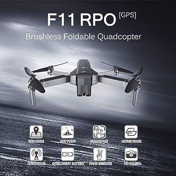 Leslaur SJ RC F11 Pro 5G WiFi FPV GPS Brushless RC Dron con cámara ...
