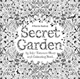 Secret Garden: An Inky Treasure Hunt and Coloring Book by Basford, Johanna (2013) Paperback