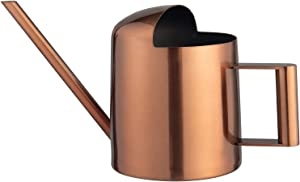 IMEEA 11oz/300ml Mini Indoor Watering Can Stainless Steel Bonsai Watering Can for Small House Plants (Copper Color)