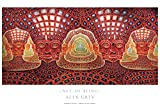 Alex Grey - Net of Being - Poster