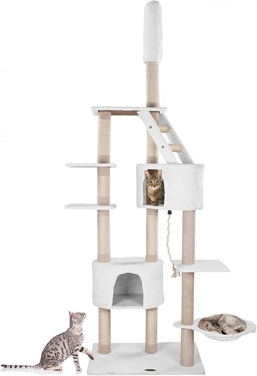 Happypet Rascador para gatos Árbol para gatos Gimnasio graffiatoio Sisal, fijación a techo, regulable en altura 210 – 233 cm: Amazon.es: Productos para mascotas