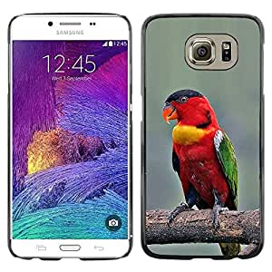 TopCaseStore / la caja del caucho duro de la cubierta de protección de la piel - Branch Red Beak Wings - Samsung Galaxy S6 SM-G920