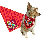 Birthday Boy - Happy Birthday Dog Bandana - Dog Birthday Scarf Accessory - Great Dog Gift Idea (Medium to Large)