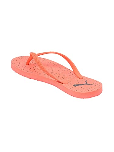 75af4ae8e9a Puma Women s First Flip WNS Dots Idp Porcelain Rose and Asphalt Flip-Flops  and House Slippers - 3 UK India (35.5 EU)  Buy Online at Low Prices in  India ...