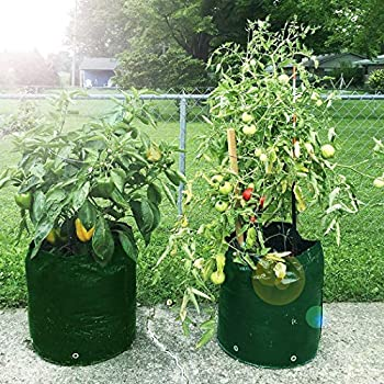 Besiva Potato Grow Bag 2-Pack Garden Vegetables Planter Bags with Flap and Handles Heavy Duty Suitable for Potato, Carrot, Tomato, Onion and so on