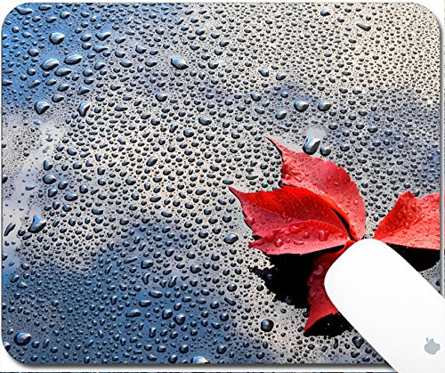 Luxlady Gaming Mousepad 9.25in X 7.25in IMAGE: 23121308 Water drops on car paint with red - Out Car On Polishing Scratches