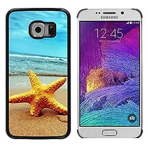 - Beach Starfish - - Monedero pared Design Premium cuero del tir???¡¯???€????€????????????¡¯?&