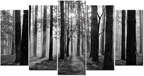 Visual Art Decor Large 5 Pieces Black and White Sunshine Foggy Forest Landscape Canvas Prints Trees Wall Decoration Framed and Stretched Painiting