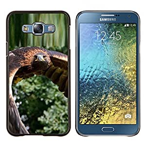 EJOOY---Cubierta de la caja de protección para la piel dura ** Samsung Galaxy E7 E700 ** --Flying Hawk Green Nature pájaro plumas de las alas