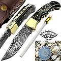 Black Wood 6.5'' Handmade Damascus Steel Brass Bloster Back Lock Folding Pocket Knife With Sharpening Rod Folding Pocket Knife 100% Prime Quality