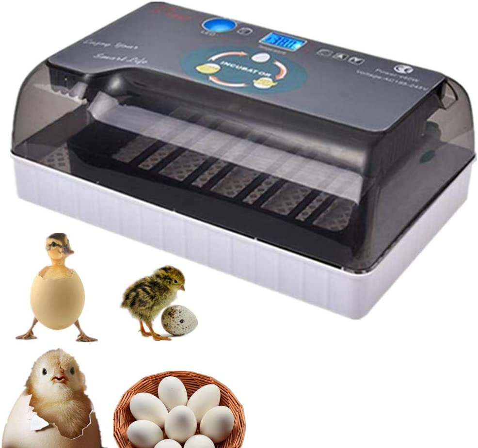 100PCS Chicken Eyes Glasses Gift Include Ultra-Quiet Led Lighting Incubator with Clear Viewing Window Automatic Turning and Hatching PROBEEALLYU Egg Incubator Digital Automatic Incubator for Eggs