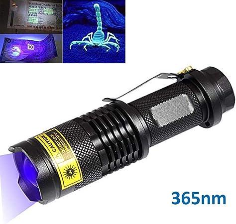 Bestsun 2 en 1 UV Lampe de Poche Torche lumière noire 395 Presque comme neuf lumière ultraviolette Chat Chien /&