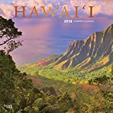 Hawaii 2018 12 x 12 Inch Monthly Square Wall Calendar with Foil Stamped Cover, USA United States of America Noncontiguous State Nature (Multilingual Edition)