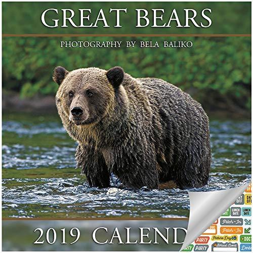 Wild Bears Calendar 2019 Set - Deluxe 2019 Bear Wall Calendar with Over 100 Calendar Stickers (Bear Decor, Office Supplies) (Bear Calendar)